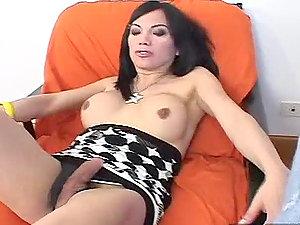 Gorgeous transsexual honey Sophia gets banged hard