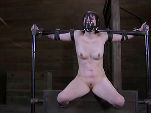 Hotly marionette having her ass-fuck screwed with nice plaything in Sadism & masochism porno