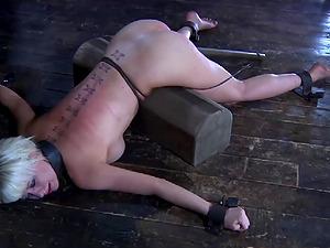 sadistisk Porno