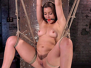 Sexy Dani Daniels destroys her unshaved pussy with friend's sex toys