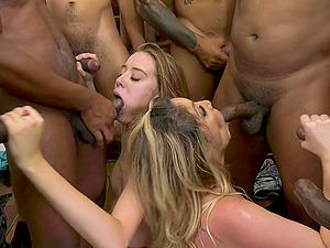 Haley Reed adores more than one penis in her mouth and hand