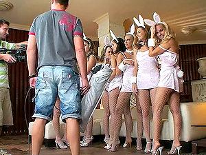 sexy porno stats clad as bunnies