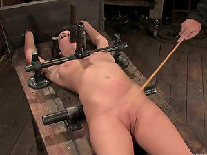 Clothespinned Cherry Ripped gets toyed and bounded