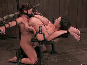 Two restrained brunettes get toyed and abjected