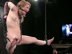 Isis Love and Madison Youthful get chained in Sadism & masochism vid