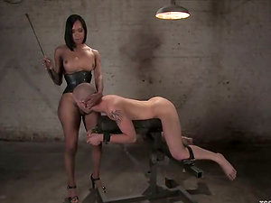 Curvy black shemale luvs how her masculine gimp bj's her shaft