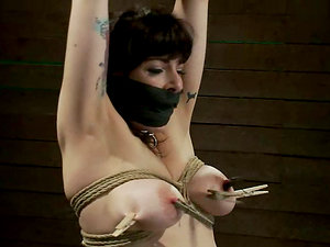 Masked Lady Gets Tied with Ropes and Toyed with Massager