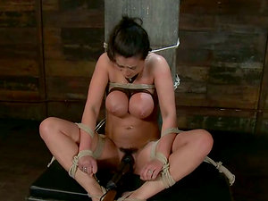 Suntanned Charley Chase gets bonded and then toyed