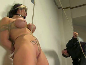 Claire Dames luvs some hot tantalizes in a gym in Domination & submission scene