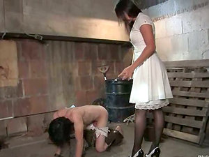 Horny Bobbi Starr Predominates Fellow for a Crazy Dick Rail in Female domination Restrain bondage