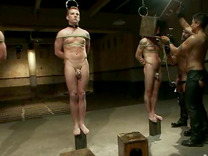 Enslaved Queer Guys Wank Off while Railing Sybians in Domination & submission Vid
